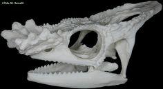 Chameleon skull plain
