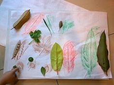 Leaf Rubbing - Fine Motor Activity by colleen