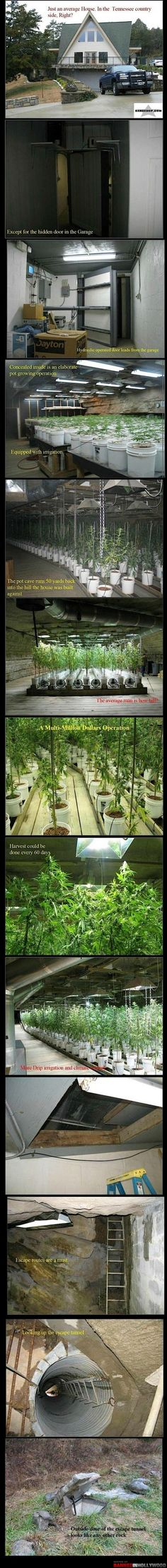 not saying i would want a pot farm... but a secret room... hell yes!