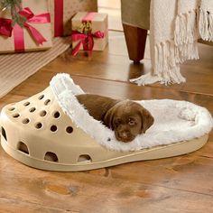 21 Pet Beds That Won't Ruin Your Decor