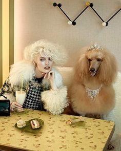 Photographers | Sandrine Dulermo and Michael Labica #fashion #photography #Magazine #fashionworldmagazine #hairstyle #editorial #dog