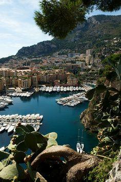 From The Botanical Gardens, Monaco