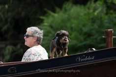 #dachshund ;take  me on the boat ride. See dogsandhumansoftheworld page on Facebook.