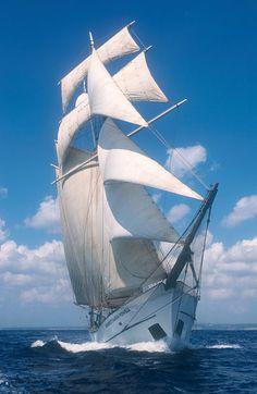 'Großsegler | sailing ship' von Frank Schneider bei artflakes.com als Poster oder Kunstdruck $18.03