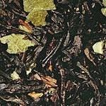 Black Currant  A wonderfull flavored black tea with notes of black currents. If you like a good Earl Grey, you might also like the Black Current.  Ingredients: black tea, strawberry leaves, natural flavoring