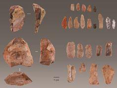 Τέχνης Σύμπαν και Φιλολογία: Homo Sapiens: Έφτασε στο δυτικό σημείο της Ευρώπης... Human Fossils, Spatial Analysis, National Science Foundation, Early Humans, University Of Louisville, Recent Discoveries, Archaeology News, Archaeological Discoveries, Animal Bones