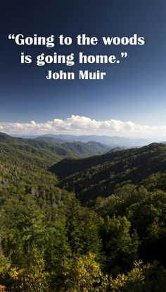 """MY TRUTH! """"Going to the woods is going home."""" John Muir – Image of Great Smoky Mountains National Park The Mountains Are Calling, Great Smoky Mountains, Snowy Mountains, Hiking Quotes, Travel Quotes, John Muir Quotes, Smoky Mountain National Park, Nature Quotes, Going Home"""