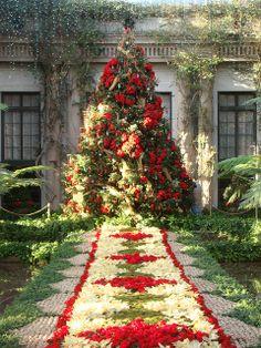 Deck the Halls, Longwood gardens, Pennsylvania