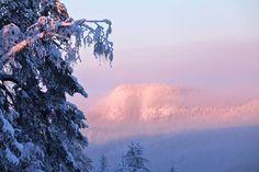 Morning in Kuusamo Finland