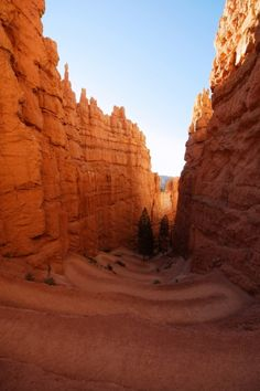 Visit all of the US National Parks Bryce Canyon National Park Oh The Places You'll Go, Places To Travel, Places To Visit, Bryce Canyon, Canyon Utah, Us National Parks, Parc National, Monument Valley, Formations Rocheuses