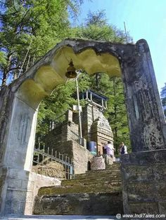 Liver Temple jaggisear
