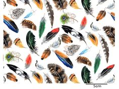 FEATHERS (L) - Roterose