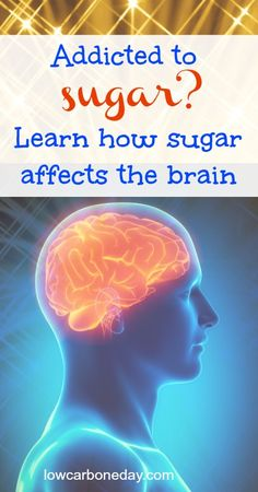 Could sugar be as addictive as drugs?  Learn how sugar affects the brain.