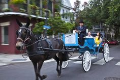 Royal Carriages -- A Sightseeing tour of the French Quarter in New Orleans! #NewOrleans #travel
