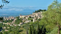 NYTimes: In Umbria, an Italian Olive Oil Worth the Accolades