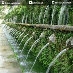 bikin ngiler banget kan???????? kalau setuju like ya Biar kami semangat cari foto bikin ngiler lainnya :D  #taman #dekorasirumahindah #dekorasi #indoor #outdoor #garden #bunga #love #instagood #cute #followme #photooftheday #beautiful #instadaily #igers #instalike #photooftheday #loveit #picoftheday  #instacool #photography #photooftheday #portrait #photogram #realestate #properties #justlisted