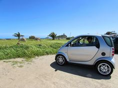 South of Sardinia, Nora Beach near Cagliari. Sardinia, Traveling, Beach, Viajes, The Beach, Beaches, Trips, Travel
