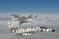 Snow tigers. Dassault Super Etendards