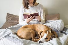 4 Books for Dog Lovers to Check Out Right Now. From a retrospective by an animal pop artist to a memoir featuring a star from 'Pit Bulls & Parolees,' discover some books dog lovers will want to dig into. Dog Boredom, Pit Bulls & Parolees, Ways To Reduce Stress, Dog Search, Dog Hacks, Dog Signs, Shelter Dogs, Pet Portraits, Pet Care