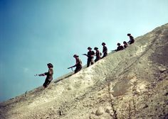 August 10th 1944, Canadian soldiers of the The Queen's Own Cameron Highlanders of Canada,  6th Brigade, 2nd Canadian Inf. Div. descend descent a steep slope near Haut-Mesnil.