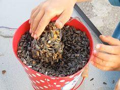 Fun Friday: Make A Pinecone Birdfeeder