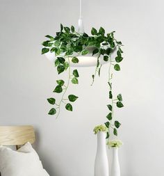 Decorate and light your home with the simple modern Mauricio planter lampshade!Made from iron metal.Measures approximately x measures approximately Source: ACVoltage: 90 - lights not included.Free Worldwide Shipping & Money-Back Guarantee Hanging Plants, Indoor Plants, Decoration Plante, Fabric Lampshade, Lumiere Led, Modern Planters, Bedroom Plants, Steel House, Oriental Design