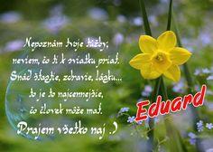 Eduard Nepoznám tvoje túžby, neviem, čo ti k sviatku priať. Snáď šťastie, zdravie, lásku... to je to najcennejšie, čo človek môže mať. Prajem všetko naj .)