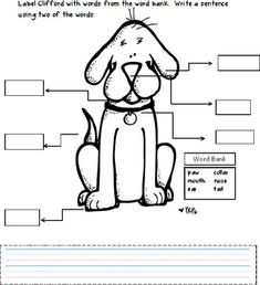 Six pages of Clifford fun, this package includes kid tested learning activities. A different kind of word search, math story problems, and label Cl...