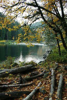 Fall   Skykomish River