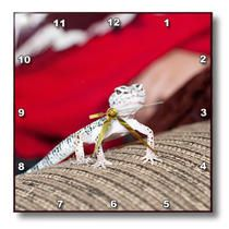 3dRose - Jos Fauxtographee Pets - A reptile on the arm of the couch shot close up - Wall Clocks