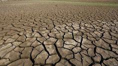 CLICK NA IMAGEM : Terra entra em nova fase de extinção