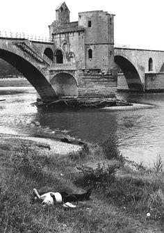 Lasse Persson - Avignon, France, 1968