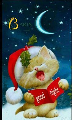 Boa noite de sono · goodnight sweet dreams of a merry christmas!