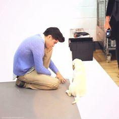 Oh. My. Gosh. I'm jealous of a dog. Favorite gif of Zayn <3{GIF}