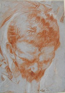 Giovanni Battista Tiepolo (1696 - 1770)  A Man's Head in Foreshortening,  Collections: Western Art Drawings Collection: Browse - Ashmolean Museum