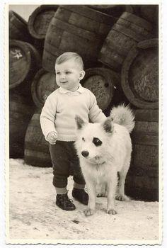 Será cierto que los perros son los mejores amigos del hombre. Será por eso que nos hacen tan felices