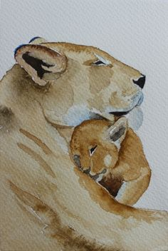 original watercolor painting lion painting animals of Afrika painting  24x32cm (9,4x12,6in)