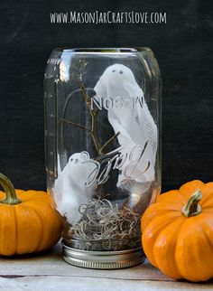 Pick up some Styrofoam, twigs, moss, and gauze, and turn an old Mason jar into a ghostly scene. Get the tutorial at Mason Jars Craft Love.
