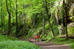 Vom Wandermagazin gewählt: Die 6 schönsten Wanderwege Deutschlands - TRAVELBOOK.de