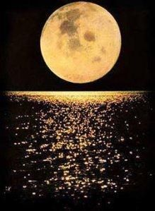 moon beams on the water..