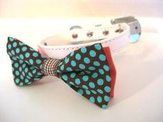Teal Dot Bowtie Dog collar, - brown coral white mint for your fur baby - choose your collar color!