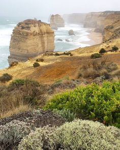 Even on a cloudy day they still look good!  #12apostles #greatoceanroad  #nature #viewpoint #beach #ocean by c_longley http://ift.tt/1ijk11S