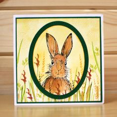 March Hares - Jenny 4