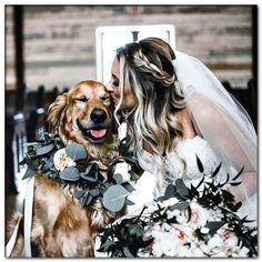 dog wedding dresses uk Dog Wedding Attire, Dog Wedding Dress, Wedding Dresses Uk, Dream Wedding, Dog Tuxedo, White Costumes, Ring Bearer, Wedding Details, Wedding Photos