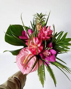 67e954ba5b27 61 Best ginger flower images