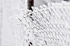 Freezed fence