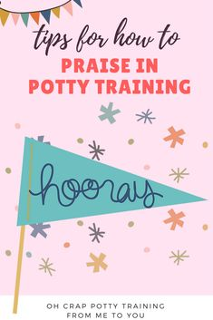 Praising Your Child for Using the Potty : How it Can Backfire   Oh Crap Potty Training From ME To You   Maine