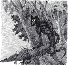 """Nalusa Falaya is a creature from the mythology of the Choctaw people. Its name translates as """"long black being,"""" and it is said to resemble a human with small eyes and pointed ears. It is one of the shadow beings in Chioctaw beliefs.  Nalusa Falaya is viewed as frightening and even harmful. Some say they lurk in swamps, calling out to lure travelers in. When they come close, they will jump out, shocking their victims into unconsciousness and eating them."""