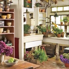 My Dream Potting Room