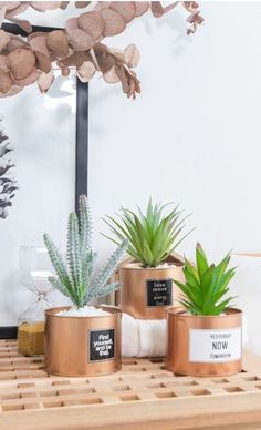 Classy and clean metal design with a little personality. Home Decor Sets, Home Decor Accessories, Diy Home Decor, How To Clean Metal, Artificial Plants, Green Grass, Home Decor Inspiration, Personality, Cactus